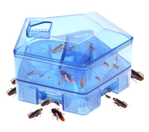 Насекомых.нет.рф - ловушка-домик для тараканов